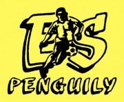 Logo ES Penguily
