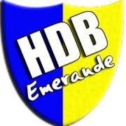 Logo Henansal HDB